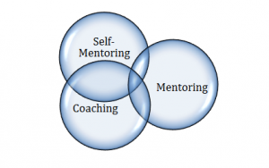 Self-Mentoring Diagram