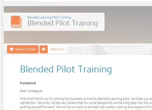 Blended Learning Pilot