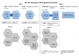 Overview of the PG Cert Programme