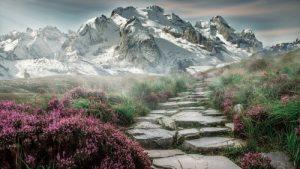 Image of a landscape