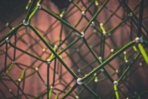Image of netting