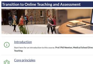 Transition to Online Teaching and Assessment